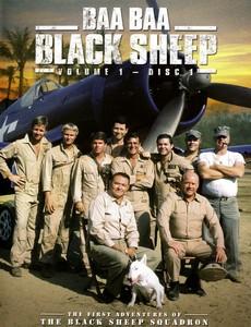 Блеяние чёрной овцы