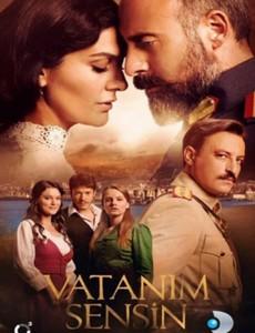 турецкие исторические сериалы и фильмы лучшие 1